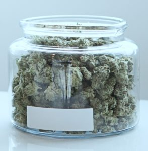 "Flores de cannabis secas para uso ""in natura"""